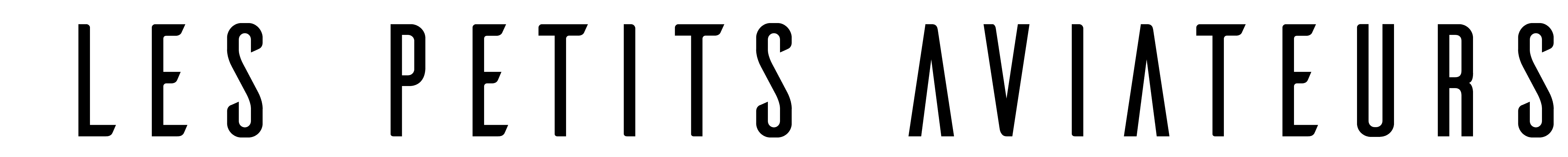 logo du site lespetitsaviateurs.fr
