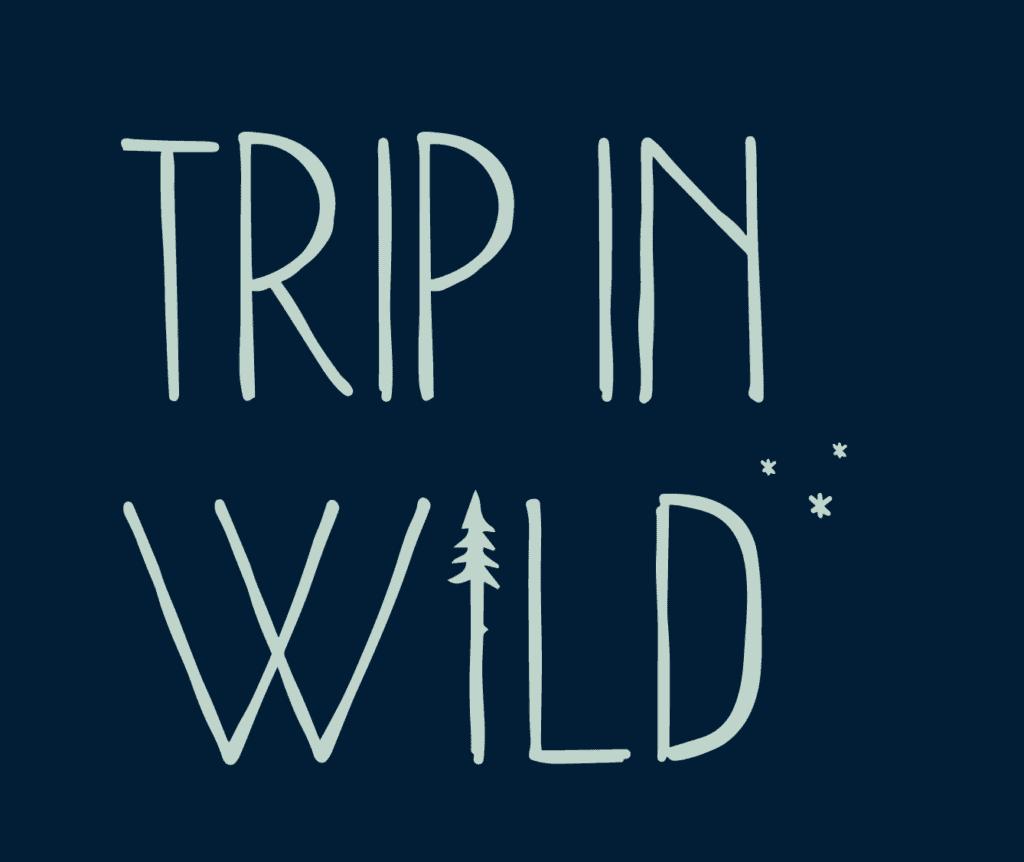 logo trip in wild vert fond bleu les petits aviateurs