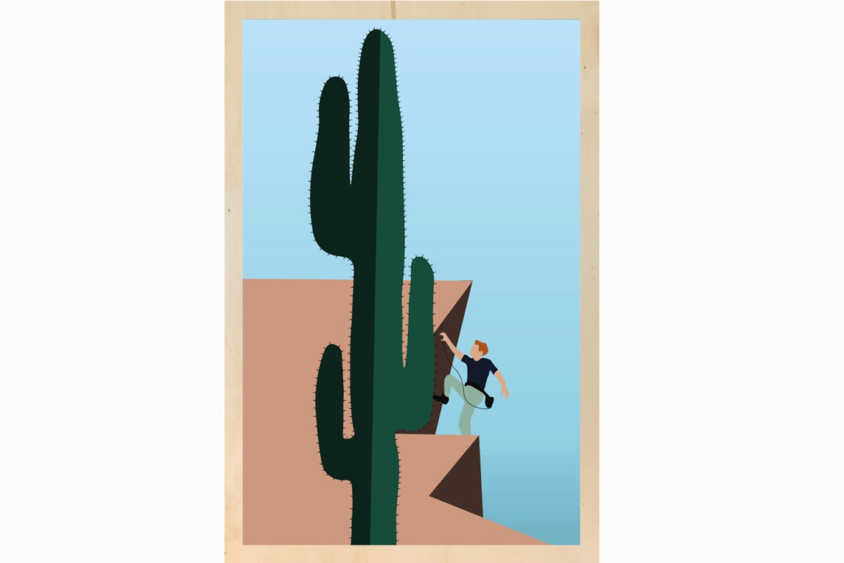 climbing the cactus illustration impression sur bois