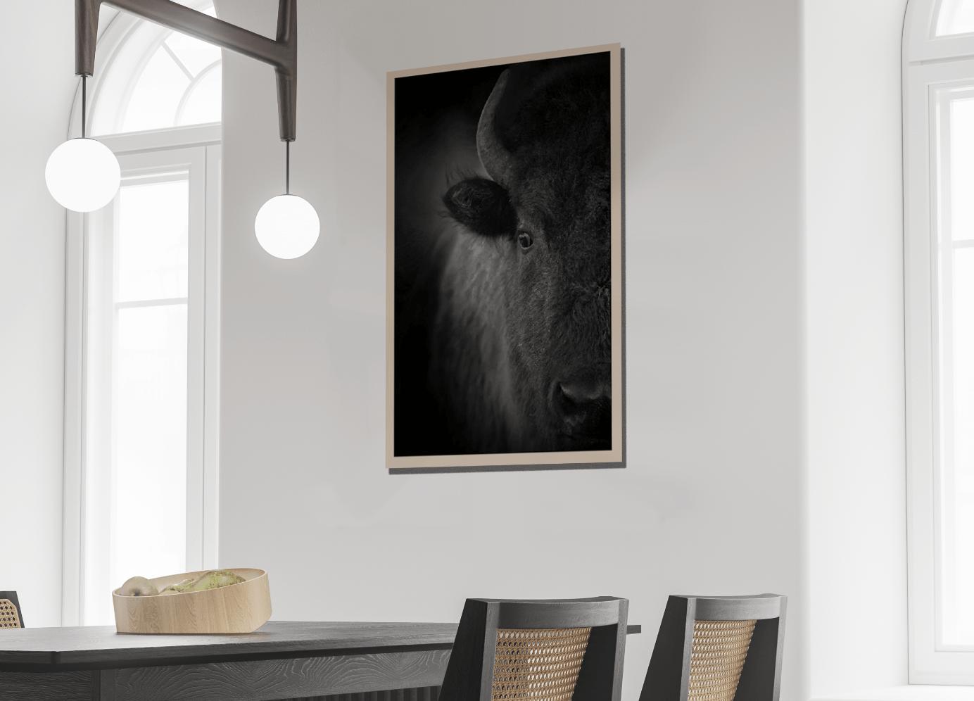 Retrouvez l'univers d'Adrien Favre